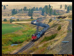 wiry-north pine-wa-8-11-2015b (funnelfan) Tags: train railroad railway shortline locomotive pnw pacificnorthwest washington pinecreek gp30 sd9 tankcars