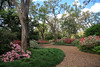 The Quiet Pathway (Robert F. Carter Travels) Tags: azalea azaleas boktower boktowergardens florida flowers lakewales flower gardens paths pathways botanicalgardens botanicalgarden landscapes landscape
