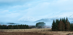 Mist Trees and Mountains-Recovered (Geoff France) Tags: landscape scottishlandscape mist mountains trees inveroran lochtulla scotland highlands dawn pines pinetrees