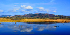 Mersehead RSPB (Joan's Pics 2012) Tags: merseheadrspb wetlands meadows pond reflections blueskies scenic