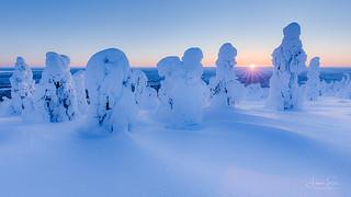 Frozen goblins