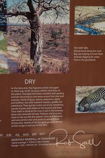 Tarangire Safari Lodge - Info Panels