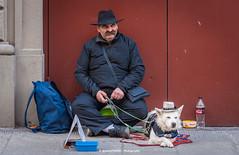 Man and dog with hat (Ignacio Ferre) Tags: italy florencia italia toscana firenze fiorence perro dog sombrero hat hombre man hombreyperro mananddog nikon floréncia street calle streetdog tuscany