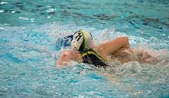 44052047 (roel.ubels) Tags: enc arnhem waterpolo hbw sport topsport 2018 2e klasse