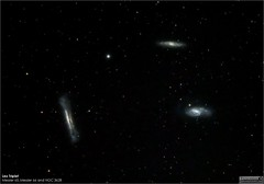 The LEO Triplet - M65, M66 and NGC 3628 (LeisurelyScientist.com) Tags: tomwildoner night sky deepsky space outerspace skywatcher telescope 120ed celestron cgemdx asi190mc zwo astronomy astronomer science canon canon6d deepspace guided weatherly pennsylvania observatory darksideobservatory stars star leisurelyscientist leisurelyscientistcom tdsobservatory backyardeos m65 m66 ngc3628 leo galaxy spiral march 2018 astrometrydotnet:id=nova2506268 astrometrydotnet:status=solved