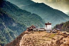 Bhutan: Dobji Dzong. (icarium.imagery) Tags: bhutan canoneos5dmarkiv captureone coniferoustrees drukyul forest green haavalley himalayas mahayanabuddhism monastery goemba sigma100400mmf563dgoshsm tree travel mountains hills architecture leefilters leend06softgrad leend075mediumgrad dobjidzong sundaylights