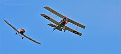 Look out Biggles! (Ian A Photography) Tags: aeroplanes airshow aircraft airfestival aviation biplanes cl1 duxford duxfordlegends historicaircraft junkers nikon planes raf se5a fighters firstworldwar
