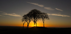 Sunset with the Sisters (thetomgrey) Tags: sunset seven sisters trees sunderland houghton sky clouds silhouette nature canon60d sigma 1835mm