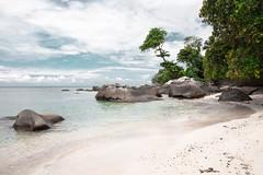 971 (O L A N D) Tags: palme shore küste seychellen mahe seychelles