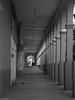portal abandonado (guilletho) Tags: blackandwhite blackwhite blancoynegro mexico morelos noiretblanc monochrome portal arquitectura monocromatico