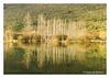 Mother Nature... (Joao de Barros) Tags: joão barros nature wild botany