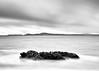 Be An Island (John Westrock) Tags: blackandwhite longexposure water deceptionpass washingtonstate pacificnorthwest seagulls overcast seascape canoneos5dmarkiii canonef2470mmf28lusm bwnd1000x