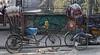 Sleeping Doge and Rickshaw Kathmandu DSC_7897 (JKIESECKER) Tags: dogs streetdogs citylife cityscenes citystreets urbanlife wildanimals animalportrait nepal kathmandunepal