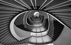 Headstand (Arx Zyanos) Tags: sony ilce7rm3 sonya7riii sonya7rmk3 voigtländer hyperwideheliar 10mm voigtländer10mmf56hyperwideheliar treppenhaus staircase staircases treppe treppen architektur architecture munich münchen insidemunich monochrom schwarzweis blackandwhite bw hyper wide heliar fullframe
