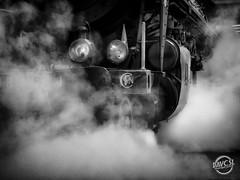 Locomotive à vapeur (davcsl) Tags: train sncf locomotive locomotiveàvapeur vapeur historic old chemindefer railway blackwhite bw biancoenero davcsl france gard history histoire nimes nîmes jesoutiensnîmes languedocroussillon monochrome monotones noiretblanc noiretblancblackwhite nb occitanie southoffrance