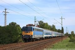 MAV 431-006 (Davuz95) Tags: ungheria 2017 hungary train loco mav magyar 431 432 vecses