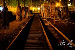 Train.jpg (SaleFaca Design) Tags: city deutschland lörrach loerrach railway night nacht schiene zug train