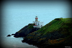 """"""" Green and White and Gold and a touch of the red """" ("""" P@tH Im@ges """") Tags: lighthouse dublinbay sea stpatricksday flag irishsea howthheaddublin gorse rustlichen home ireland"""