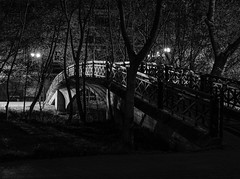 Bridge (asamoal2) Tags: bridge trees tree bw blackwhite park green riverside lights outside