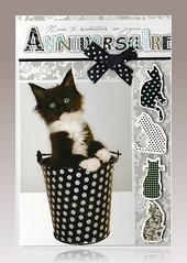 Carte de Michèle Hennin (Diegojack) Tags: cartes anniversaire cadeau amies fabuleuse