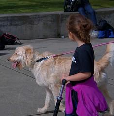 Dog Walking (Scott 97006) Tags: dog canine animal pet kid girl scooter