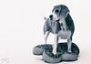 Suri (Sergio Nevado) Tags: suri perro dog beagle animal studio estudio mascota pet