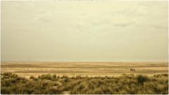 Borkum beach (Heinze Detlef) Tags: insel borkum strand sand beach ostfriesischeinsel wattenmeer menschen himmel
