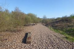 Old railway trackbed near Treeton junction,  Sheffield  (former SDR route)   April 2018 (dave_attrill) Tags: catcliffe sheffield railway line disused trackbed remains goods sdr sleeper treeton ballast april 2018 sheffielddistrictrailway southyorkshire