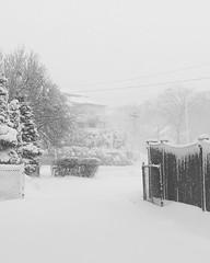 Snow Day - Malden, MA