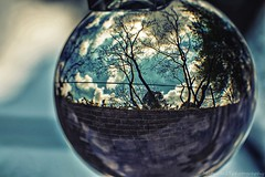 When I look into my crystal ball I dare to dream beyond the wall IMG_8337-1 (matwith1Tphotography) Tags: matwith1t canon eos70d 70d 100mm lensball dreamy smileonsaturday roundandround