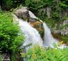 Walter's Falls, Ontario (Lois McNaught) Tags: waltersfalls falls waterfall water nature scene landscape ontario canada