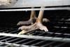 Penosas condiciones en el mayor productor de huevos de Inglaterra (Igualdad Animal | Animal Equality) Tags: igualdadanimal animalequality maltratoanimal gallinas huevos investigación inglaterra