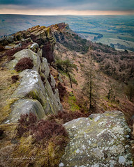 The Roaches (kieran_metcalfe) Tags: countryside staffordshire hencloud landscape portraitlandscape nature loveengland efs1755mm heather theroaches peakdistrict 80d gritstone canon
