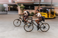 To School (Balaji Photography - 4.8M views and Growing) Tags: cycle cycling school students children couple friends panning canon wheels riding blur bicycle people pedals uniformdress boys yellow auto spokes tyre tubes schoooling chennai canon70d