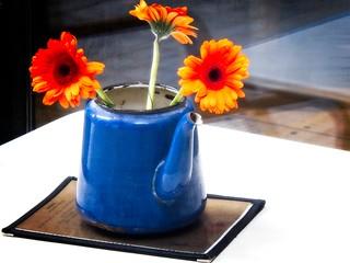 Gerbera Teapot