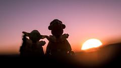 12/52 - Friendship (Reiterlied) Tags: 18 35mm ackbar d500 dslr lego legography lens lofoten minifig minifigure nikon norway photography prime reiterlied starwars stuckinplastic sunset toy yoda
