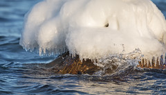 Cold Sea (Ranveig Marie Photography) Tags: ice sea wave cold sjø frost frozen midbrød midbrødstranda eigerøy egersund eigersund is istapper dalane rogaland ocean kaldt vinter winter march mars icicles