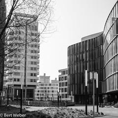 Unbenannt (weber.bert) Tags: köln analogefotografie blackwhite inbiancoenero noiretblanc grauwertabstufungen sw