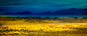 Sky & the Valley (Beppe Rijs) Tags: natur sossusvlei namibia afrika africa desert wüste landscape landschaft rock fels berge mountain color farbe abstrakt abstract blue blau yellow gelb gras grass nationalpark nature np namib