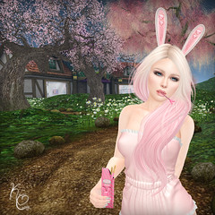 Bunny Biscuits 1 (sauceysinisterinsl) Tags: kawaii couture bunny biscuits pocky sweets bento poses