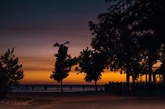 Take me back (pooja.anoop) Tags: thefloridakeys visitkeywest visitmiamiflorida visitmiami sunsetphotography sunset skies travelhunting dusk duskphotography nikon nikond750 3nikonusa nikonphotography travelflorida topvacation beautifuldestinations igmonumentalworld landscapescapture beach beachphotography oceanviews dramaticskies igmonumentalworldskies nature higgsbeach keywest southernmostpoint vibrantsunsets warmwinds turquoisebluewater atlanticocean mangnificentsky destination