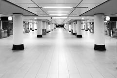 3:50 AM (Thomas Rotte) Tags: 350 am amsterdam central station netherlands night early morning train railway black white bw perspective vanishing point pilar lobby hallway passage underground