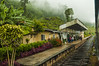 Estación de Great Western / De Kandy a Ella (Miguel Ángel Prieto) Tags: kandy ella train tren sri lanka