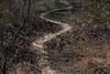 Querétaro -3290180303 (Jacobo Zanella) Tags: queretaro mexico 2018 sendero camino senda path line hidden mysterious rural land rough jacobozanella jz76