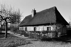 La chaumière aux orties - La Haye-de-Routot (Philippe_28) Tags: lahayederoutot 27 eure normandie normandy france europe 24x36 argentique analogue camera photography film 135 bw nb