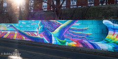 Dasic fernandez @ Newburgh NY (ZUCCONY) Tags: streetart 2018 newburgh bobby zucco bobbyzucco yesstreetart graffiti ny new york art mural murales