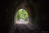 Dularcha tunnel (NettyA) Tags: 2017 australia dularchanationalpark dularchatunnel qld queensland scbwc sunshinecoast bushwalk bushwalking historic old railwaytunnel seqld tunnel mooloolah