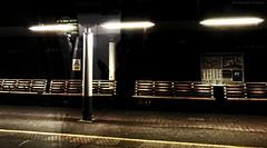 Abstract - Light & Shade (dksesh) Tags: sesh seshadri seshfamily dhanakoti haritasya harita vilambisamvatsara appleiphone7 apple appleiphone iphone iphone7 hounslow hounslownature reserve nature wild plants bushes trees grass reed twigs fitness walking naturewalking freshair fireshwildnessair gym gymnasium cranevalleynaturereserve cranevalley rivercrane cranevalleypark langfordriver feltham hanworth brentfordrailwaystation brentford ccgmar2018 fccbronze
