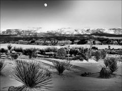 (Phoebus58) Tags: desert newmexico whitesanddunes alamogordo yucca moon lune sable sand montagne mountain canyon olympus