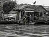 Life On The River--7 (floydbro) Tags: cambodia tonlesap blackandwhite floatingvillage people